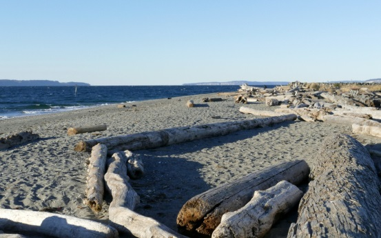 Open Spiritual Circle at Marina Beach Park in Edmonds
